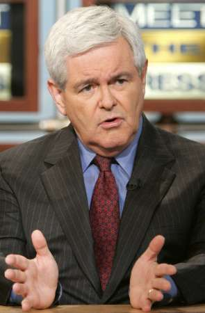 Newt Gingrich on Meet the Press